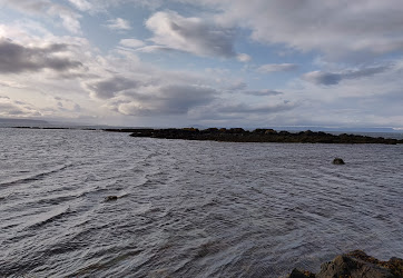 11 Seal beach